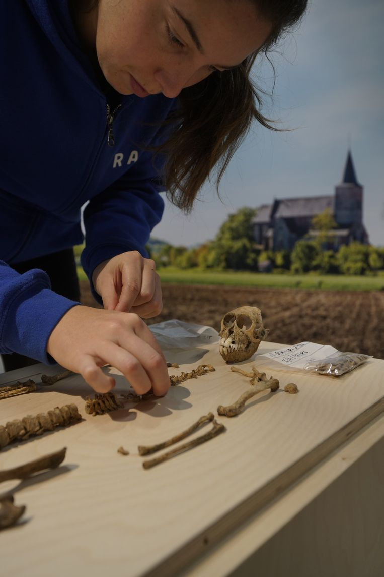 De beenderen werden opgegraven op het Marktplein in Sint-Lievens-Houtem.