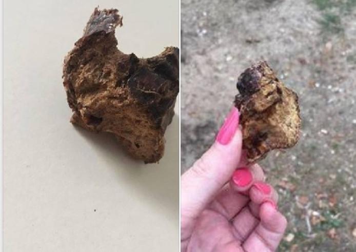 Het voorwerp dat een vrouw uit Eerbeek uit de bek van haar hond heeft gehaald. Het zou gaan om een gebakken spons.