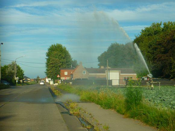 Tussen Jonkershove en Houthulst stond een sproeikanon gisteren iets te dicht bij de weg.