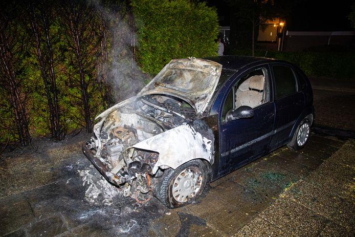 De voorkant van de auto is volledig verwoest. Ook de coniferen kwamen niet ongeschonden uit de strijd