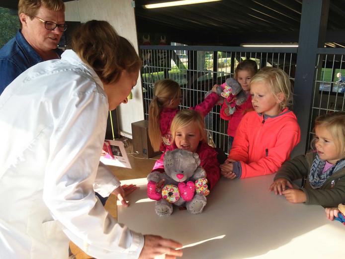 De knuffeldierendokter onderzoekt de knuffel van kinderen.