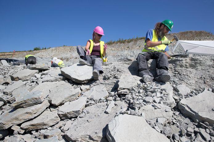 Winterswijk lag ooit dicht bij de evenaar, bewijst onderzoek van gesteente uit de steengroeve.