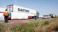 """Dertiger overleeft zware klap tegen truck op A12 niet: """"Vermoedelijk afgeleid door gsm"""""""