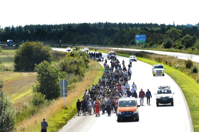 Migranten langs de weg in Denemarken, september 2015 Beeld epa