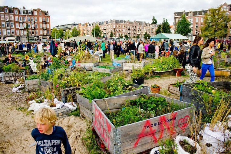 Fijn, als we allemaal onze eigen groenten konden verbouwen in de stad. Beeld Stadsboeren