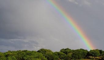 Een gradenboog van kleuren