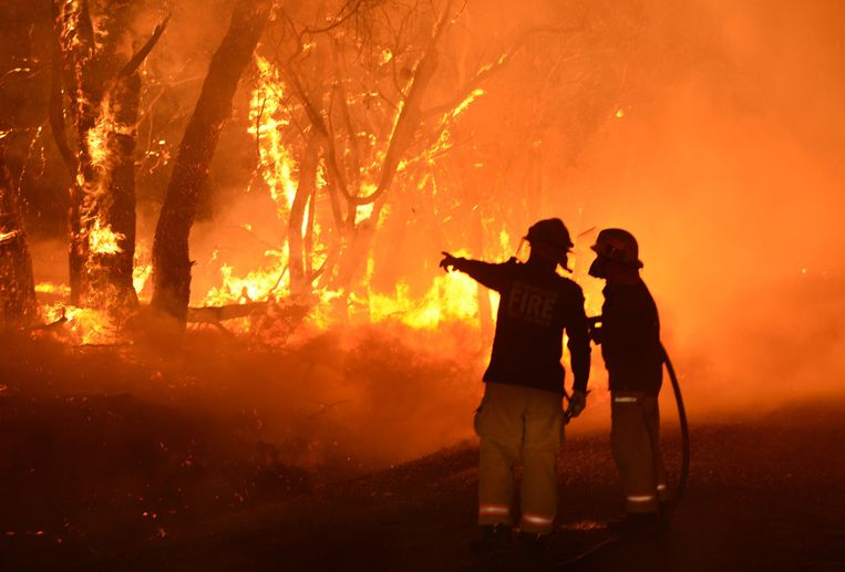 Brandweermannen proberen het vuur onder controle te krijgen in Kersbrook, Zuid-Australië. Beeld Campbell Brodie/ Hollandse Hoogte