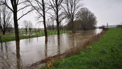 Ruim 30 liter neerslag zorgt voor verzopen weiden en velden en hoge waterstanden