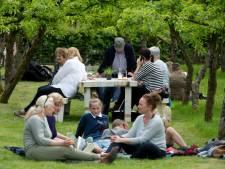 Weer picknicken tijdens Bloei Festival