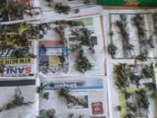 Politie vindt drugs in woning Oostburg, bewoner aangehouden