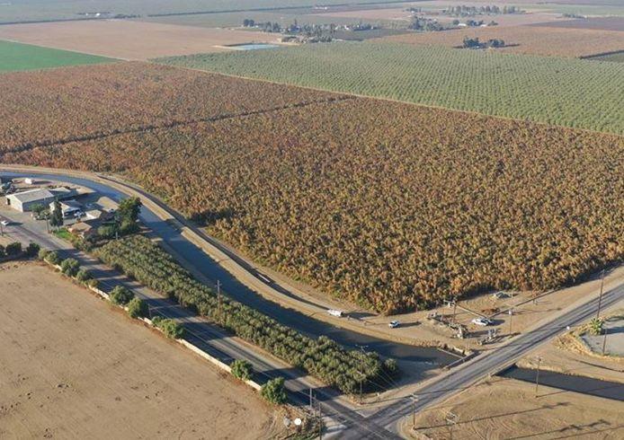 Een van de velden waarop de cannabis werd verbouwd.