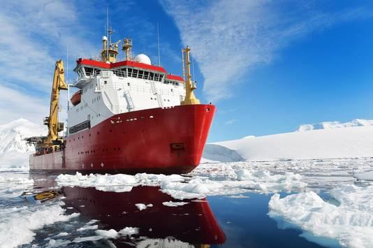 Vlaamse Wordt Postbode Tussen Pingu 239 Ns Op Zuidpool