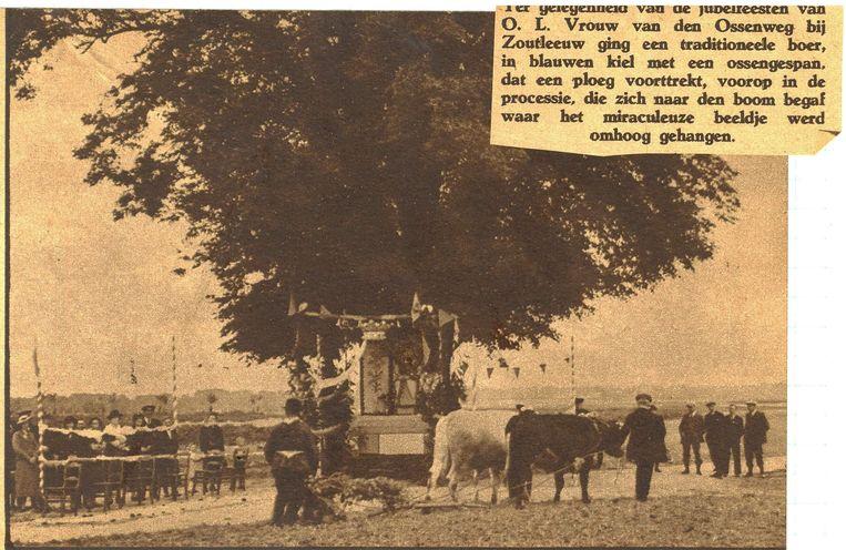 De Lindeboom in een van de vorige eeuwen in volle glorie tijdens de jaarlijkse processie
