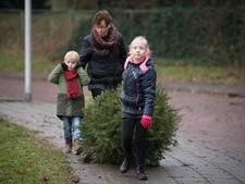 Hoofdprijzen kerstboominzameling vallen in Daarle en Kruidenwijk
