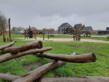 Bende stort zich op speeltuinen in Dedemsvaart en Hardenberg