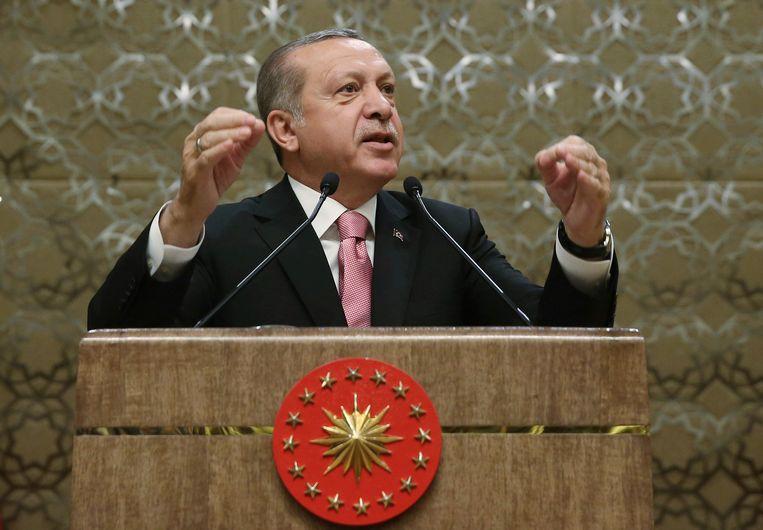 De oppositiepartijen vrezen een 'dictatuur' van president Erdogan indien het referendum toelaat over te stappen naar een presidentieel systeem dat de macht van het parlement zou afzwakken.