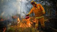 Australische staat Victoria verlengt noodtoestand door aanhoudende bosbranden