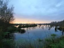Hoogveenfestival sluit werk aan Peel in Helenaveen en Ospel af