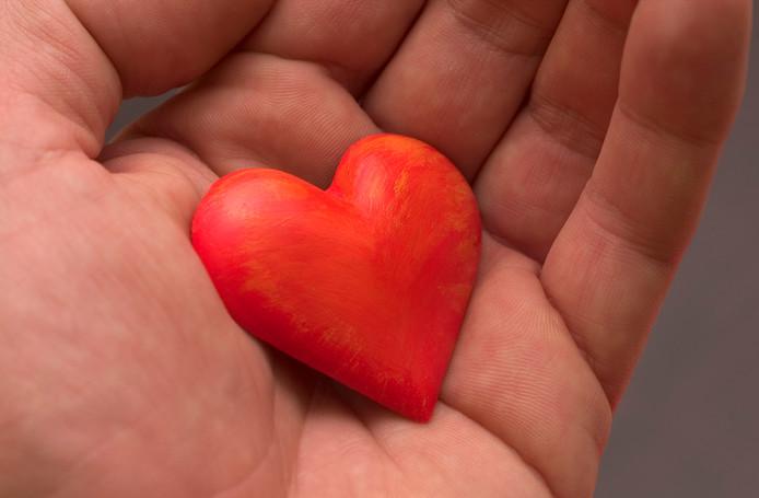 La demande en organes tels que le cœur, les poumons, le pancréas, le foie et les reins reste toutefois supérieure à l'offre, selon Luc Colenbie, coordinateur des transplantations à l'UZ Gent.