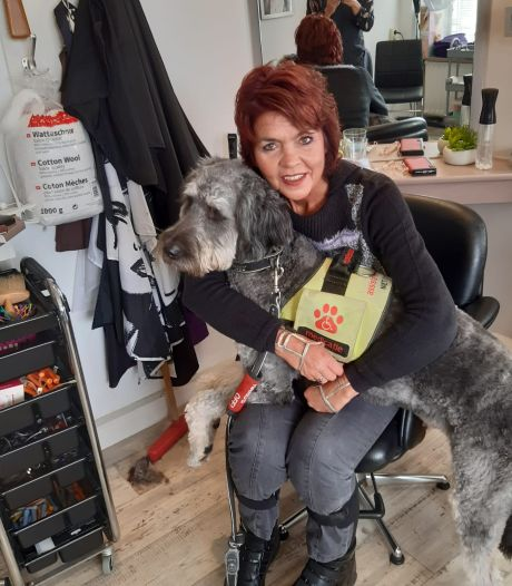 Vuurwerkbom verjaagt assistentiehond Luuk, baasje Ester blijft achter in rolstoel: 'Misdadig'