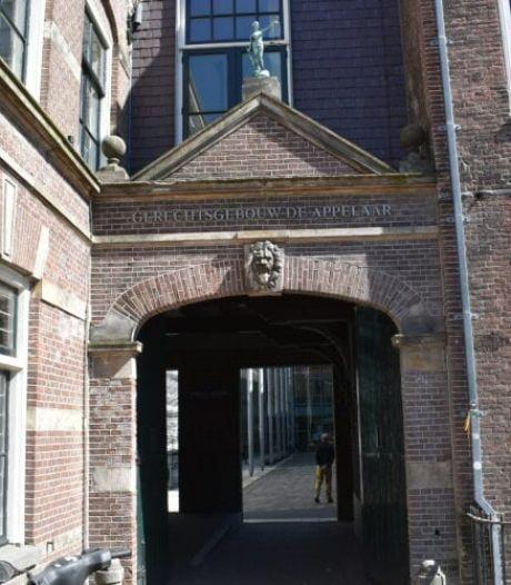 Heb jij deze nieuwe muurschildering in het centrum van Haarlem al gezien?
