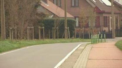 Extra paaltjes moeten fietsveiligheid verhogen in Koekoekstraat