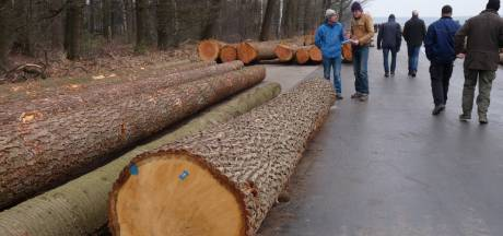 Start boswerkzaamheden tussen Amerongen en Veenendaal