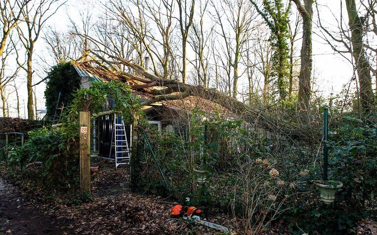 De boom kwam op het dak van de woning van Tillo terecht.
