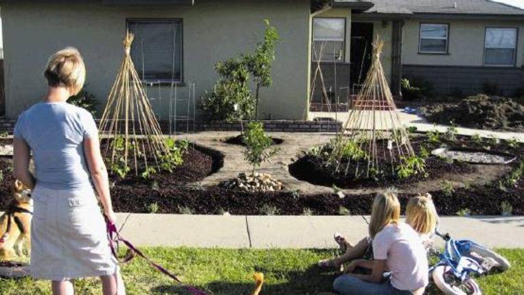 De Amerikaanse architect en kunstenaar Fritz Haeg verklaart in zijn boek ‿Edible Estates, attack on the front lawn‿ de oorlog aan het perfecte, groene gazon als symbool van schone schijn waarachter een milieuvijandige werkwijze schuil gaat. Haeg moedigt iedereen aan dat gazon om te toveren in eenmoestuin, en heeft zijn idee inmiddels zelf op diverse locaties, zoals hier in Los Angeles, in praktijk gebracht. (FOTO KCET ) Beeld