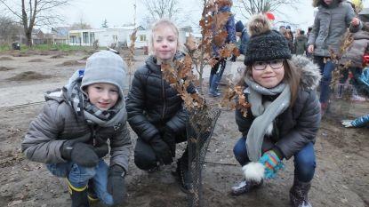 Leerlingen Sint-Hendrik planten tweede helft schoolbos aan