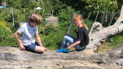 """Freinetschool de Tinteltuin zet op speelse manier heropening in: """"Zoveel  mogelijk buiten om veiligheid kinderen te garanderen"""""""