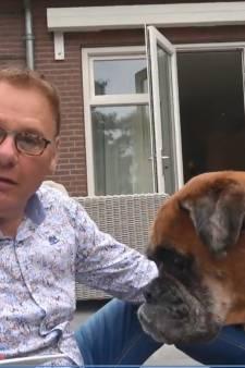 Vlog Jan de Hoop: Bob de Boxer is jarig