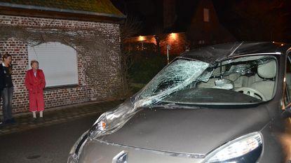 Uitgebroken jumpingpaard botst tegen auto