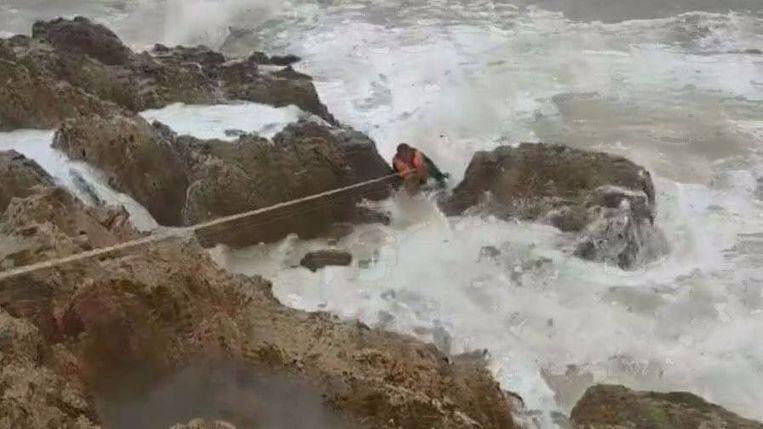 Meer dan tien mensen hielpen bij de reddingsactie.