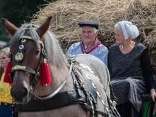 Kunstenaar schiet Sallandse boer te hulp