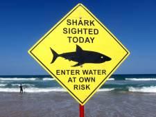 Un homme tué par un requin en Australie