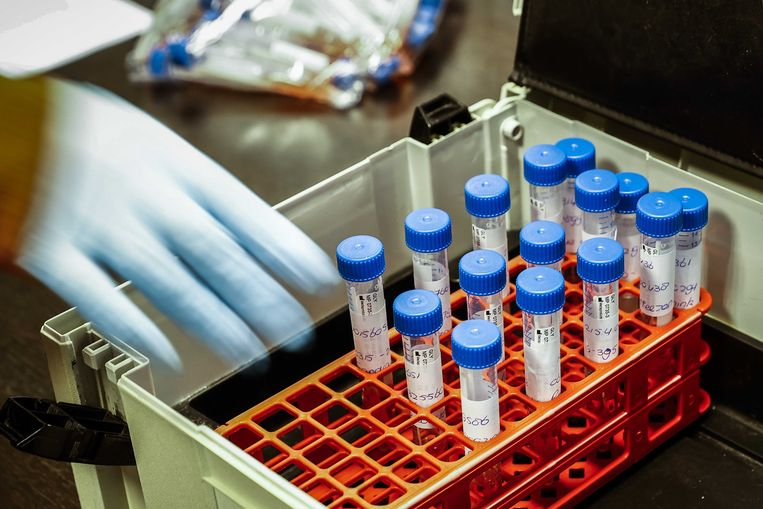 De eerste experimenten met de sneltest test zijn hoopgevend.   Beeld ANP