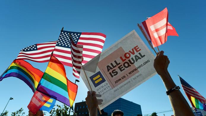Voorstanders van het homohuwelijk vieren feest.