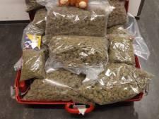 Bijna elf kilo hennep gevonden in woning Roosendaal