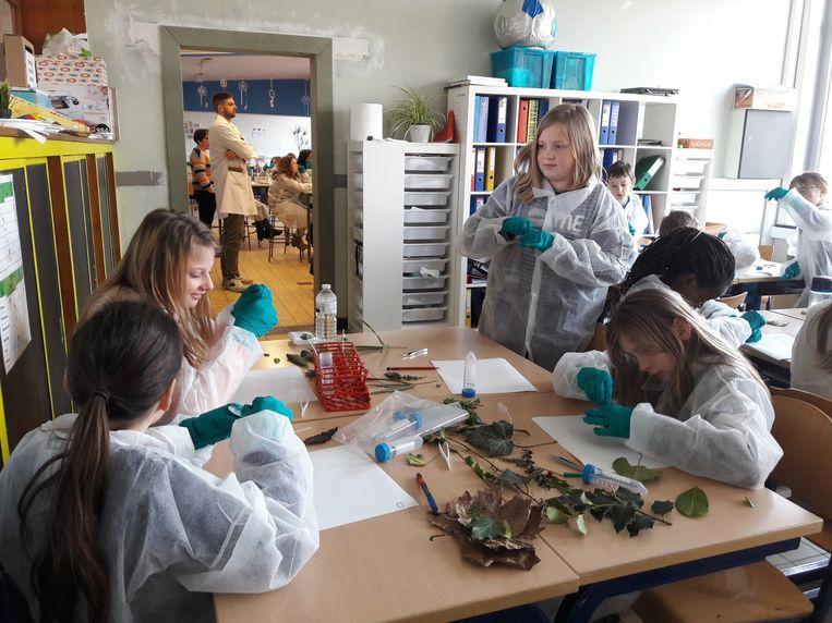 De leerlingen dompelden zich onder in de wetenschap.