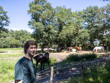 Bewoners Onderduikersweg Steenwijk voelen zich 'overvallen' door komst scouting