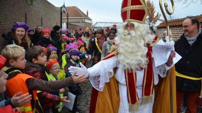Sinterklaas krijgt warm onthaal in Denderleeuw