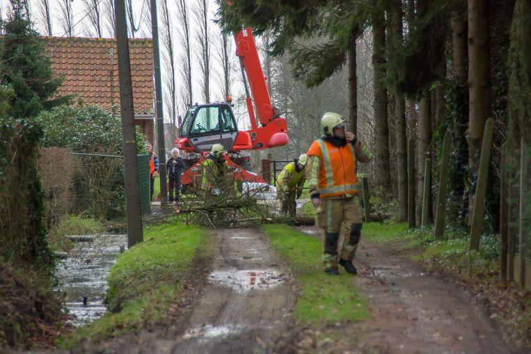 in de Korte Heesdonkstraat moest de brandweer voor de tweede maal op vier dagen tijd een omgevallen boom weghalen.