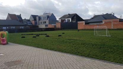 Speelplaatsen van kleuterscholen in Wetteren worden groener