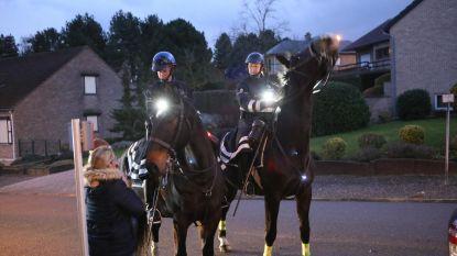 Patrouilles te paard ingezet in Schaffen