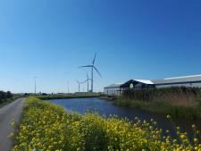 Plannen voor meer zonneparken en windmolens 'leugenachtig', dus wil Forum een referendum