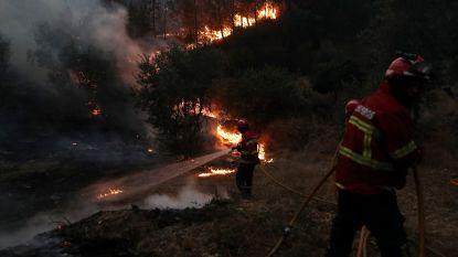 Duizend brandweerlui zetten strijd tegen bosbranden voort in Centraal-Portugal