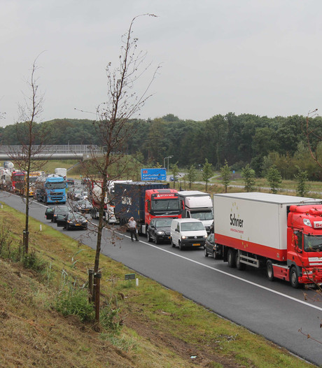 Meer benzineauto's op de weg, industrie waarschuwt: 'Pas op voor klimaat'