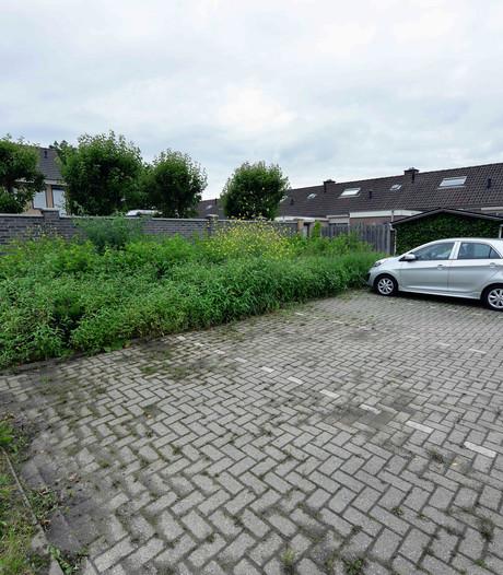 Volkspartij Steenbergen: 'Gebruik weer bestrijdingsmiddelen tegen onkruid'