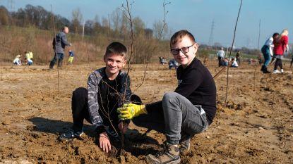 Kinderen planten 2.500 bomen aan in Berrenheibos